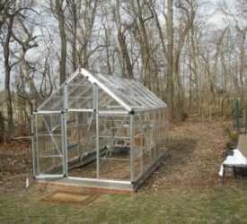 Joan-Davids-New-Greenhouse
